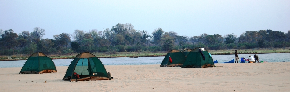 Tents setup for a night on the Zambezi River