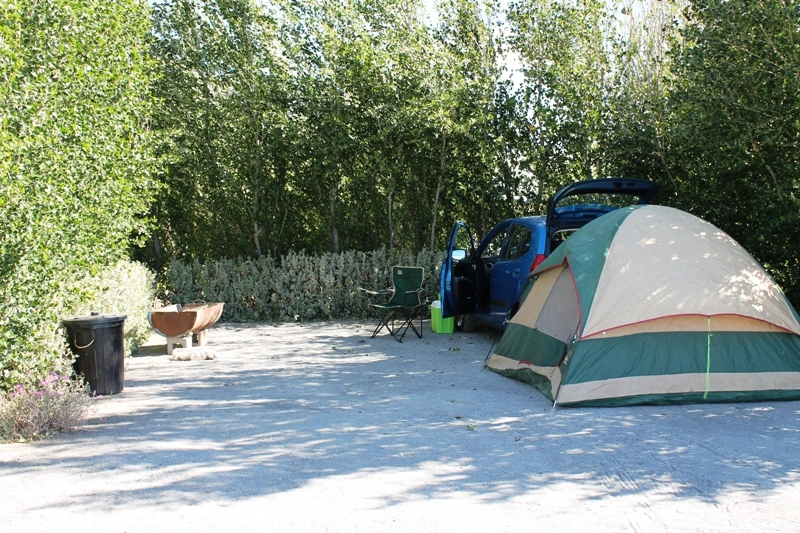 The paper tent, the Blue Bullet and a rather serene and peaceful looking campsite