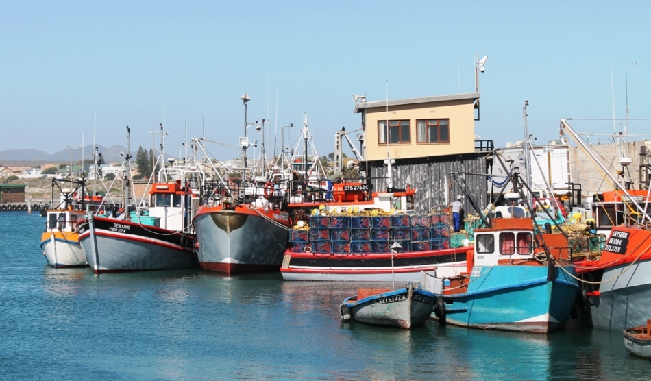 Colourful Fishing Boats in the harbour at Lamberts Bay
