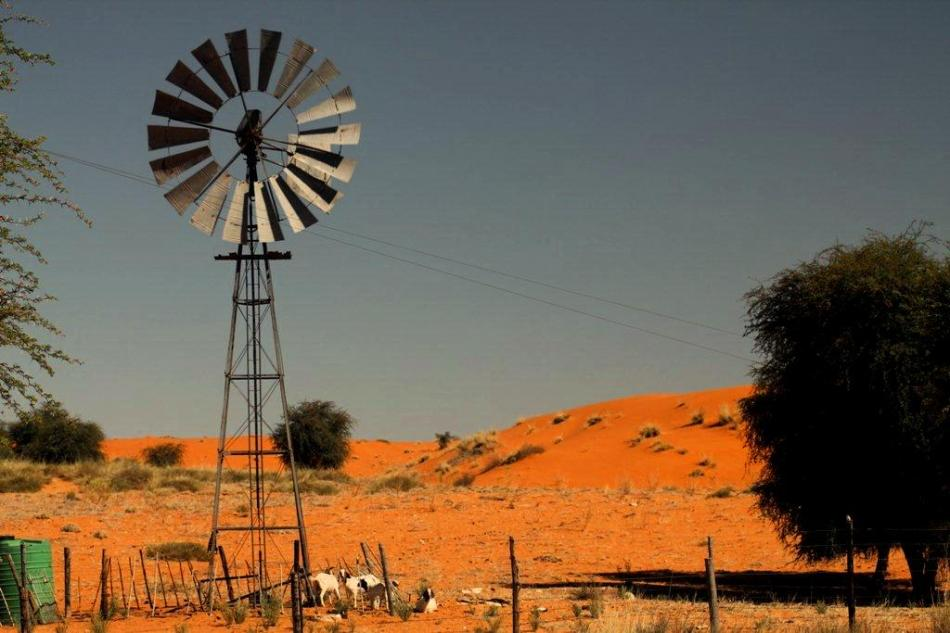 A lone windmill and a sad goodbye to the Kgalagadi National Park, I will miss you Kalahari!