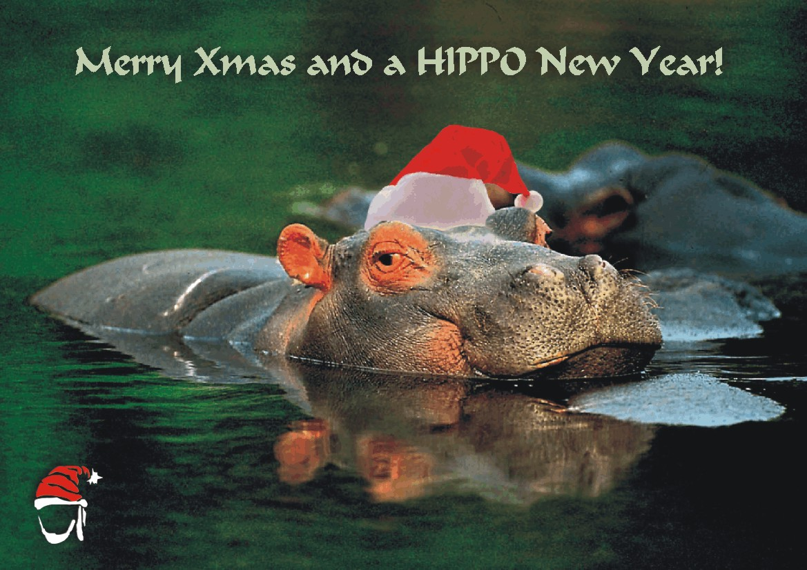 Christmas card | Nomad Africa Adventure Tours