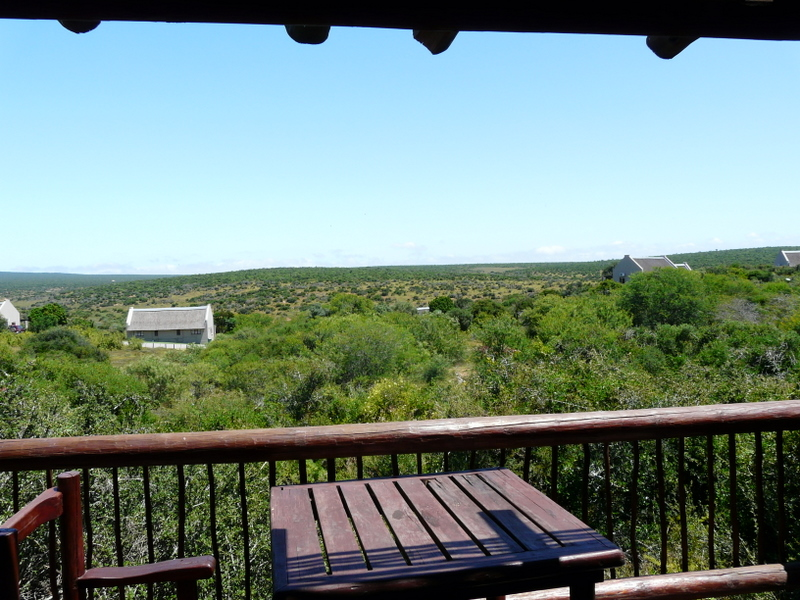 The view from my balcony at Addo Elephant Park