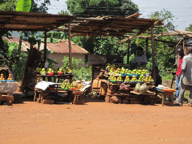 Roadside Life in Entebbe